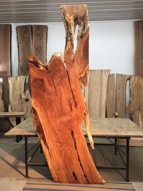 Live Edge Elm Slabs Figured Live Edge Elm Slabs Live