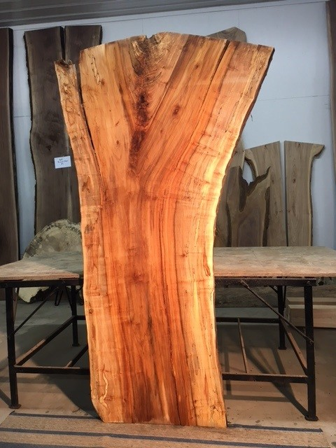 Live edge maple slabs spalted