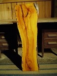"40"" X 13"" X 3.25"" FREE FORM OSAGE ORANGE"" FIGURED OSAGE LUMBER! PRIMITIVE LIVE EDGE WOOD! THICK SUPER RARE SLAB! U-101"