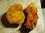 """2 PACK FREE FORM OSAGE ORANGE BURL"" FIGURED BURLY OSAGE LUMBER! LIVE EDGE WOOD! 2 SUPER RARE BURLS! U-79"